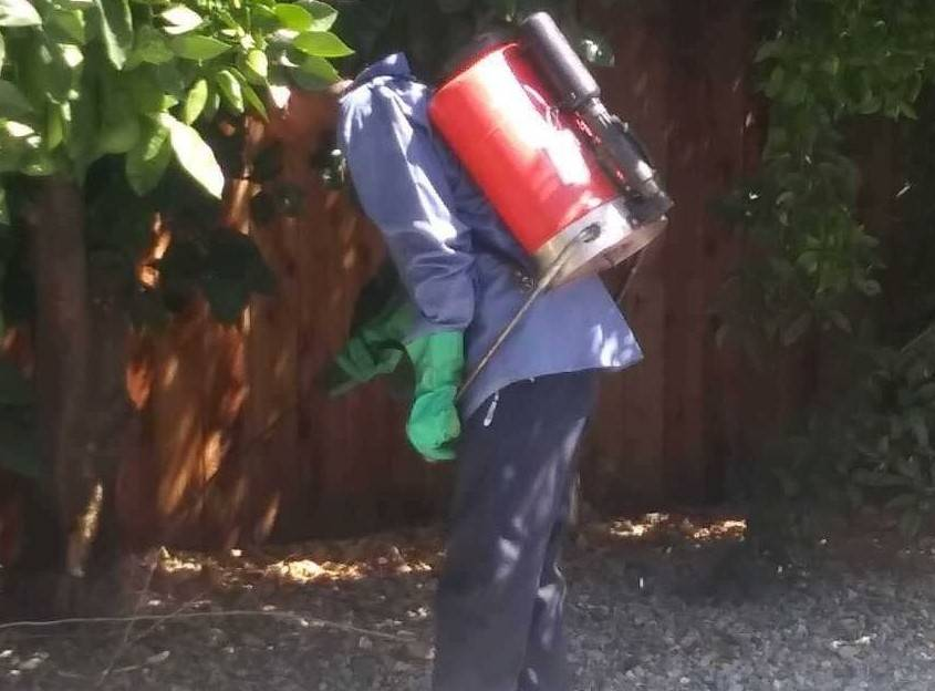 Pest Control Services in and near Menifee, Ca