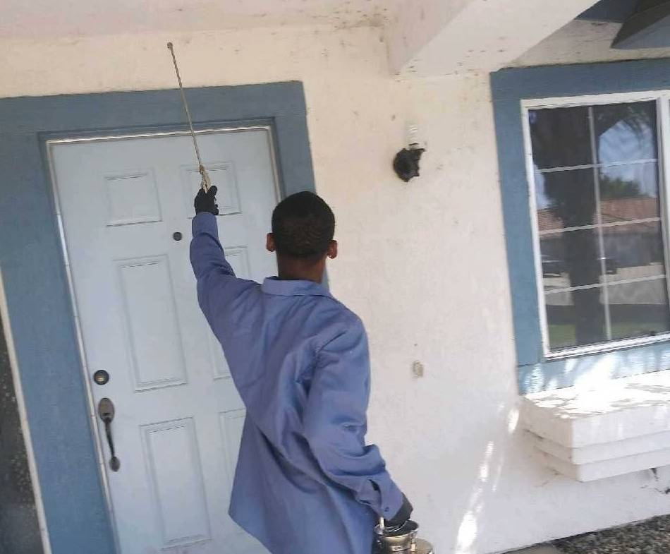 Pest Control Services in and near Menifee, Clifornia