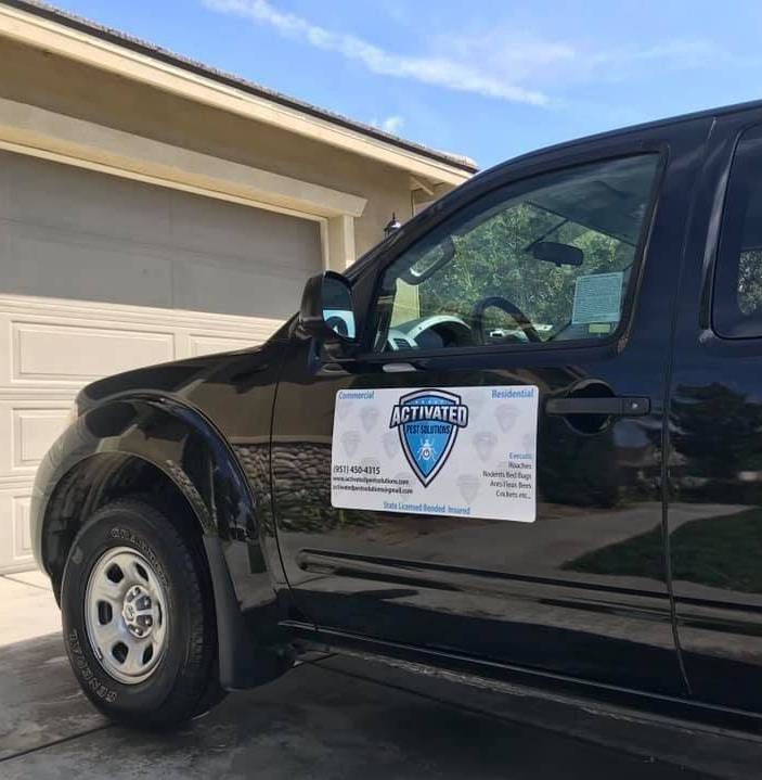 Pest Control Solutions in & near Menifee, Ca